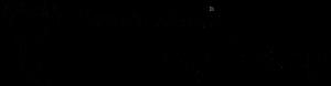 株式会社デンタルスタジオビッグバンロゴ